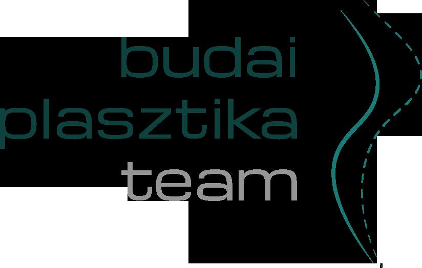Budai Plasztika
